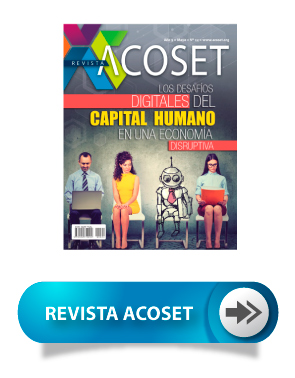 Seccion PAUTA revista acoset 2